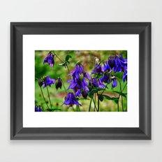 Purple Petals in the Rain Framed Art Print