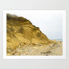 Montauk Beach Sand Dune Art Print