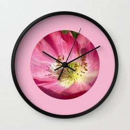 pink bloom focus IX Wall Clock