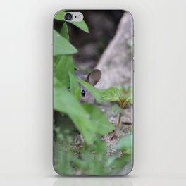 Peek-A-Boo, Mousie iPhone Skin