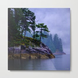 Ice Age Wonder - West Coast Art Metal Print