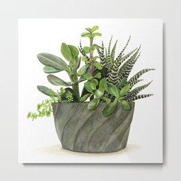 Watercolor Succulents Metal Print
