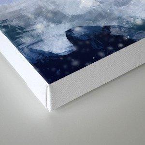 Ice elf  Canvas Print