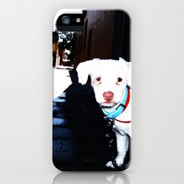 Alley Dog iPhone Case