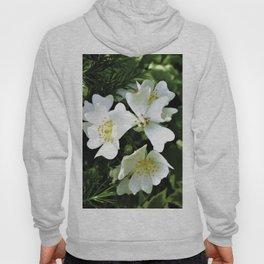 The Wild Rose Hoody