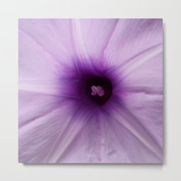 PURPLE OMBRE Metal Print