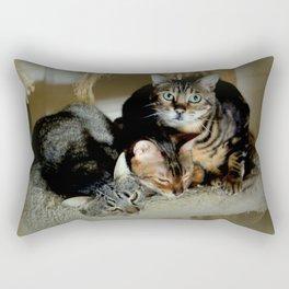 Three Close For Comfort Rectangular Pillow