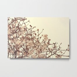 Spring Blossoms - Nature Photography Metal Print