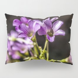 Springtime Blooms Pillow Sham