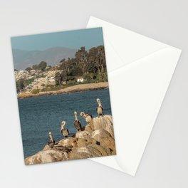 Pelicanos en Concón Stationery Cards