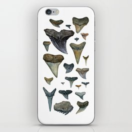 Fossil shark teeth watercolor iPhone Skin