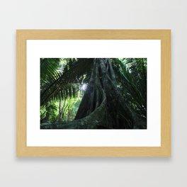 In The Bush Framed Art Print