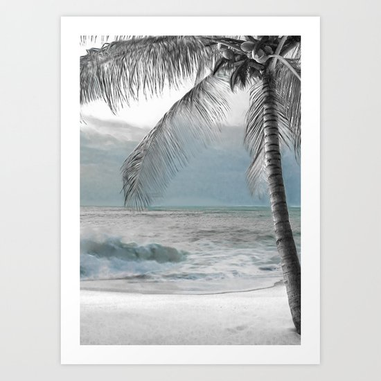 White Coconut Palm Tree by christyne