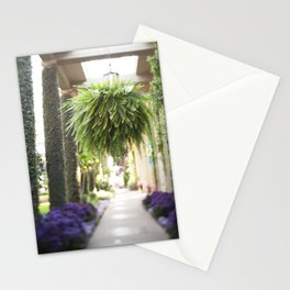 The Fern Stationery Cards