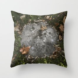 moon on the earth Throw Pillow