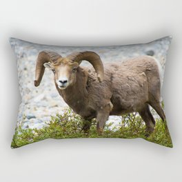 Ram Stare Down Rectangular Pillow