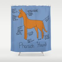 the hound Shower Curtains featuring Pharaoh Hound by Lindsay Beth