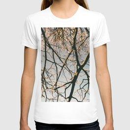 TREES BY EDUARD T-shirt
