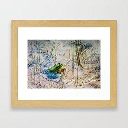 The Pond Framed Art Print
