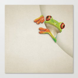Little Red Eyed Tree Frog Canvas Print