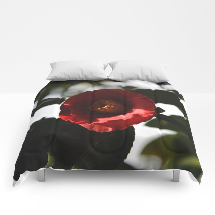 Let It End Comforters