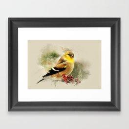 Goldfinch Watercolor Art Framed Art Print