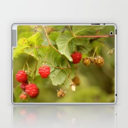 Sweet Raspberry Branches #decor #society6 Laptop & iPad Skin
