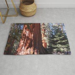 Giant Sequoia Rug