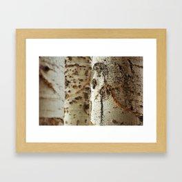 Three by Jessi Fikan Framed Art Print