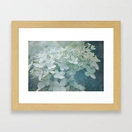 Veiled Beauty Framed Art Print