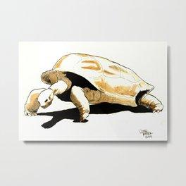 Shuffles the Aldabra Tortoise Metal Print