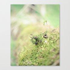 Little green world Canvas Print