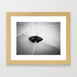 fleeting moment Framed Art Print