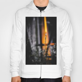 Heaven and Hell Are Raging Inside Me Hoody