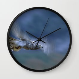 GOSHAWK IN FLIGHT Wall Clock