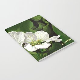 Beautiful white - Flora Azores Notebook