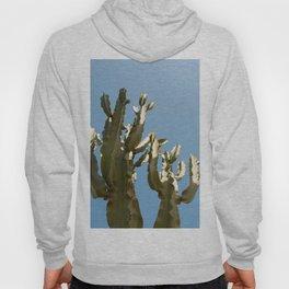 Cactus blue background Hoody