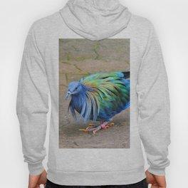 Nicobar Pigeon Strut Hoody