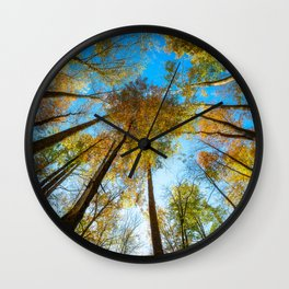 Kaleidoscope - Fall Colors in Trees of Great Smoky Mountains Wall Clock