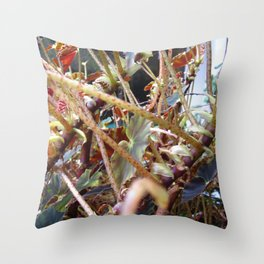 Dragon Fight    [PLANTS]   [VINES] Throw Pillow