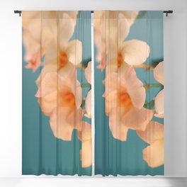 Tropicana #1 Blackout Curtain