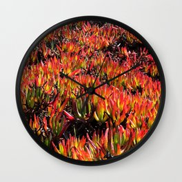 Ice Plants Wall Clock