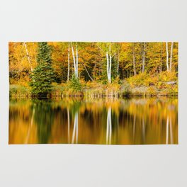 Autumn Reflections - Birch trees on Lake Plumbago Rug