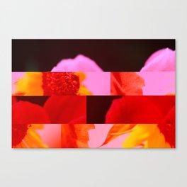 crash_ 02 Canvas Print