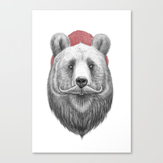 bearded bear Canvas Print