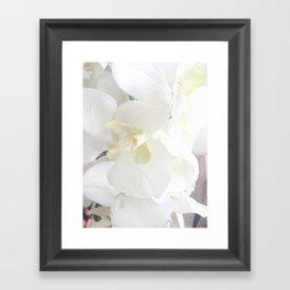 White Lily Flower Framed Art Print
