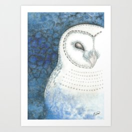 Value Owl Art Print