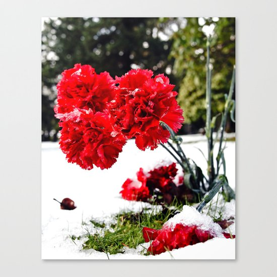 Frost flowers Canvas Print