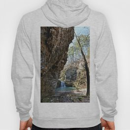 Alone in Secret Hollow with the Caves, Cascades, and Critters, No. 16 of 21 Hoody