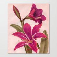 vintage floral Canvas Prints featuring Vintage Floral by 83 Oranges™